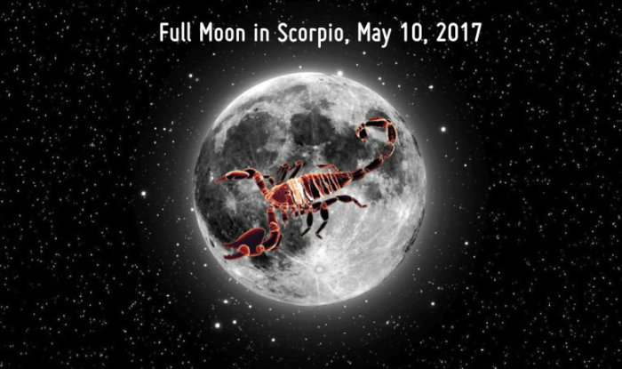 Full Moon in Scorpio_Tarotencounters